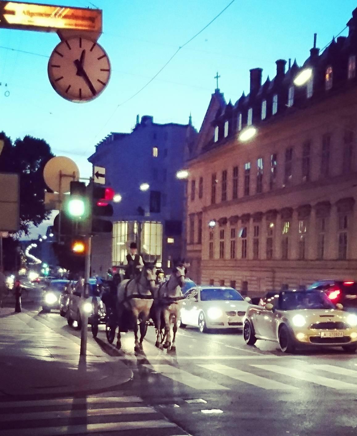 コロラトゥーラ(ソプラノ歌手)として歩む、音楽の故郷 ウィーン