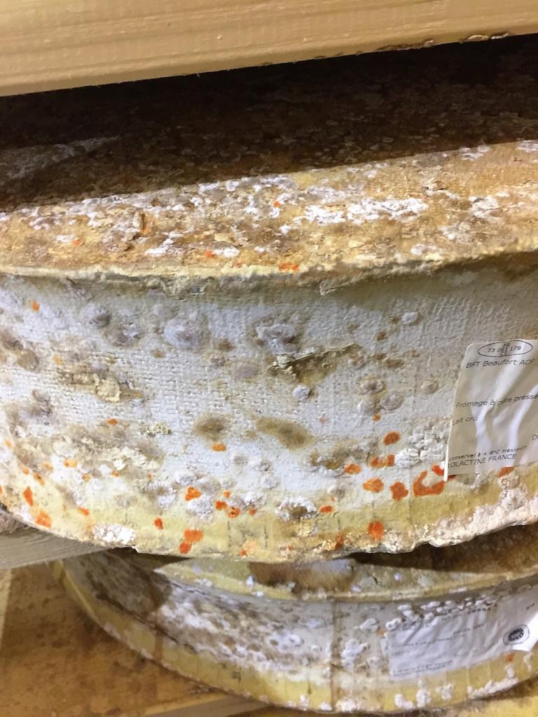 今、チーズを召し上がるなら「アルパージュ」がおすすめ