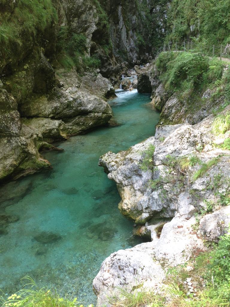 スロベニア人が大好き!  夏休みの甘いお楽しみ。