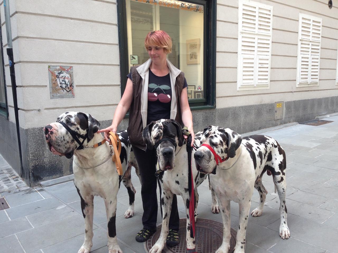 「わんわん大行進」スロベニア、愛すべき犬たちとの暮らし
