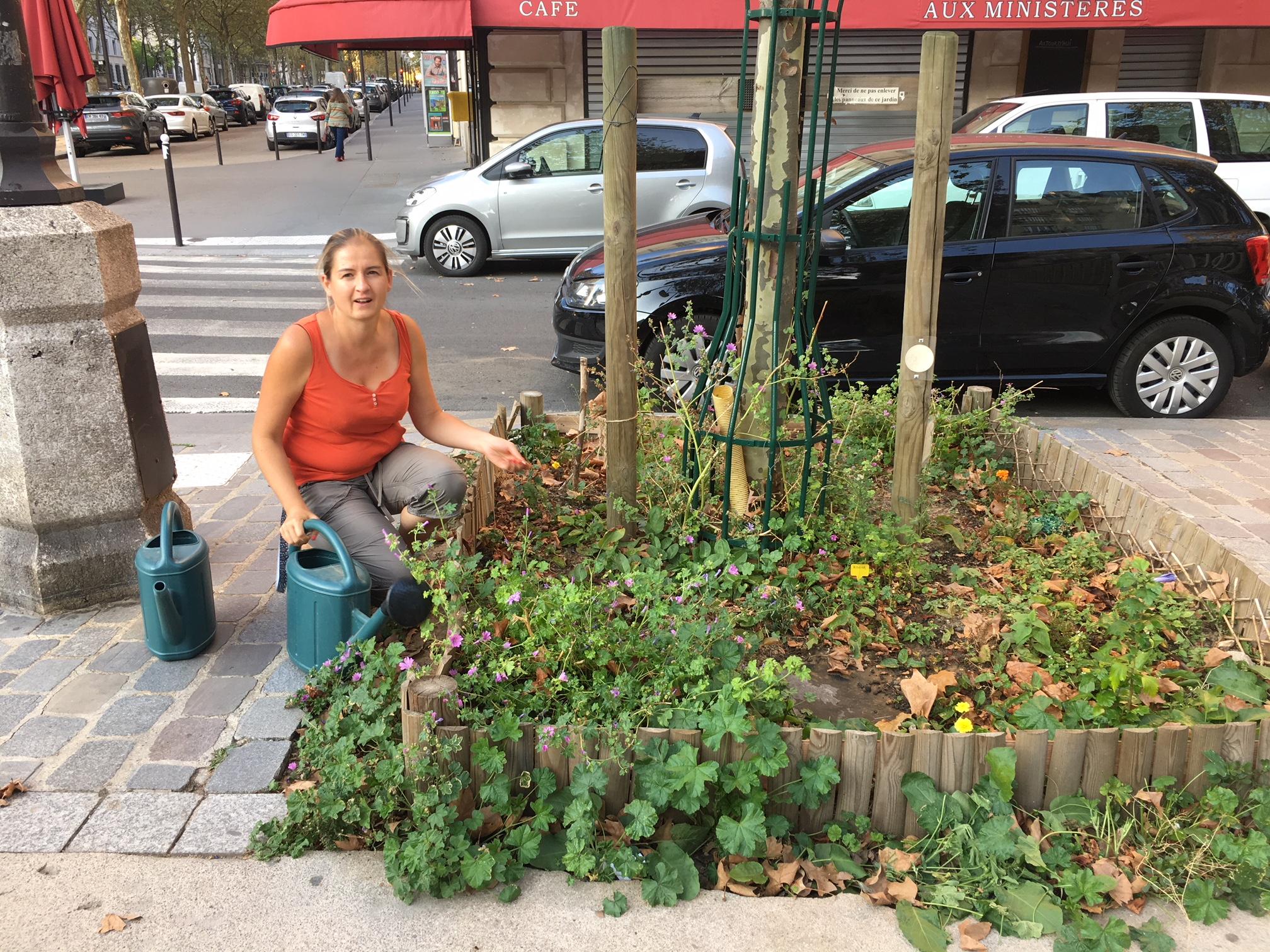 マダムも熱狂、凄すぎる! パリ市緑化計画