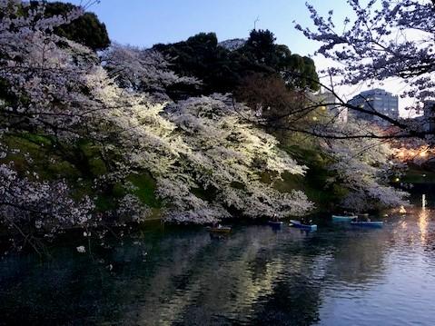 滞仏日記「東京幻想とパリファンタジー」