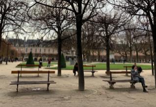 滞仏日記「パリの濡れ落ち葉、ワシも族の生態について」
