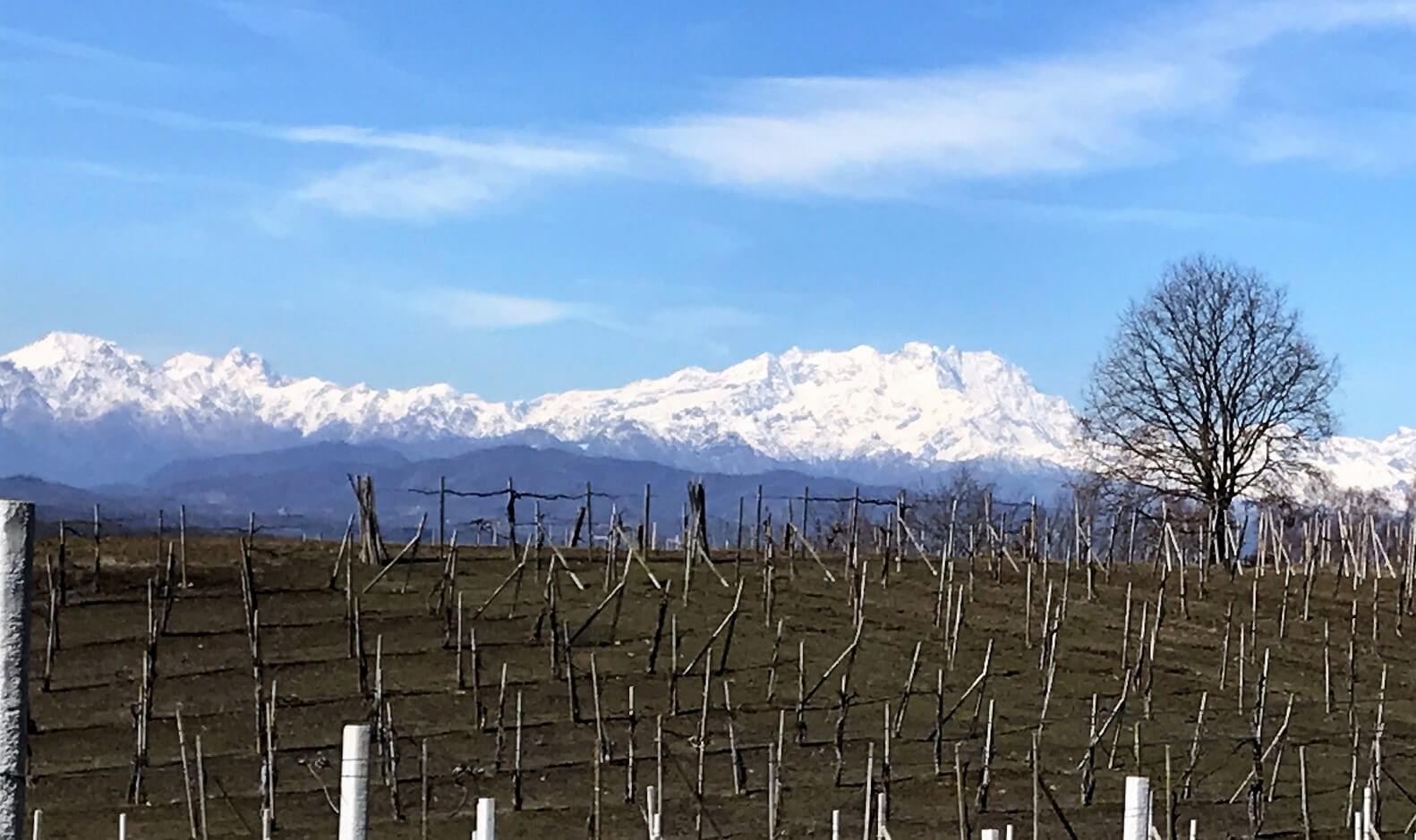 「イタリアの春はまだ遠く」
