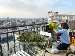ステイホームは窓際癒し計画に最適期間!