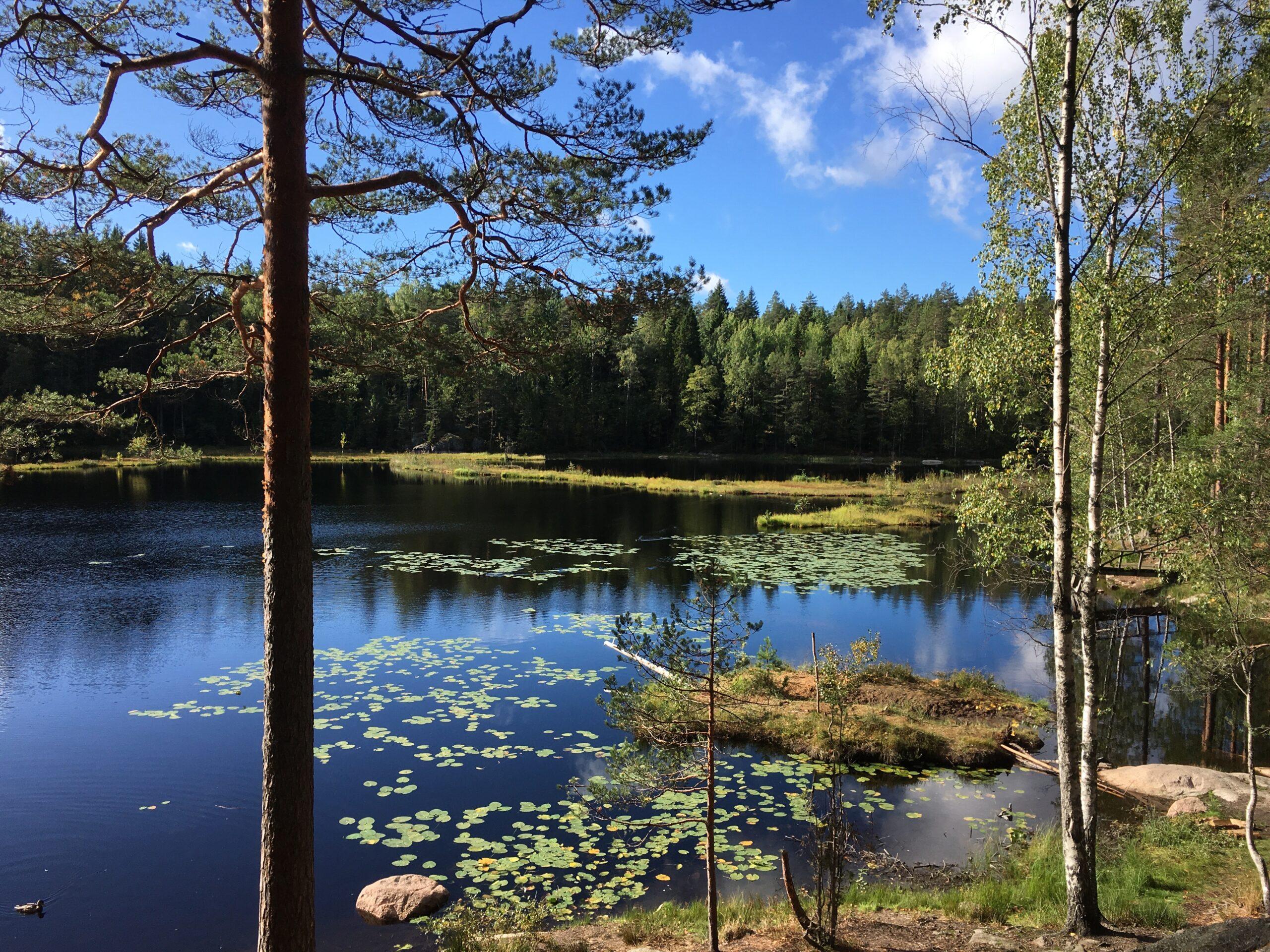 ザ・インタビュー「幸福度世界一に輝く、フィンランドの幸せな生き方」