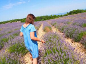 「決定、プロヴァンスの田舎町を散歩しながら巡る・オンラインツアー」