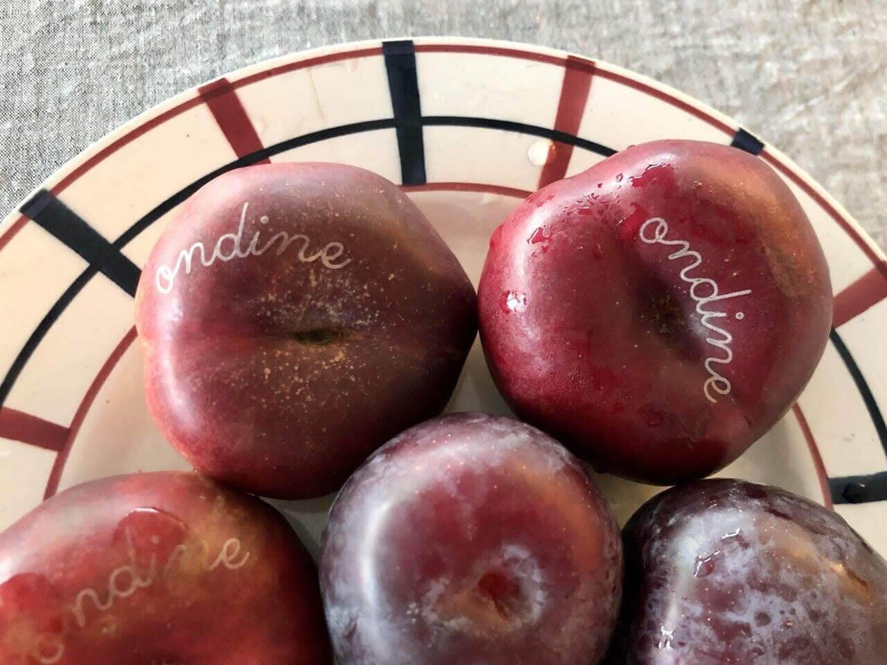 欧州最新情報「果物にタトゥー!?ゴミ問題へのフランスでの工夫」